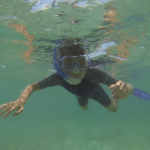 Plonger du bord avec son masque, ses palmes, une bouteille ou un tuba Marseille à la palme Snorkeling à MARSEILLE le monde en PMT
