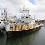 La Calypso bateau de légende l'odyssée cousteau