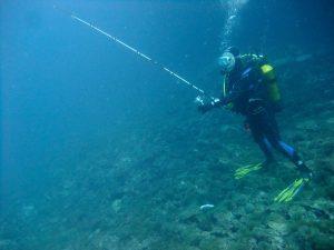 pêche à la ligne du bord en Méditerranée