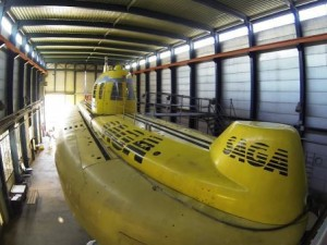 Les compagnons du sous-marin SAGA