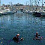 Plonger du bord dans le Vieux-Port de Marseille
