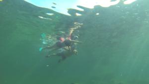 107 spots de snorkeling
