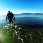 Recherche un binôme pour plonger du bord dans le Var Plongée du bord à Six-fours-les-plages