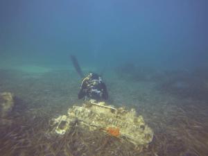 Plonger du bord à Hyères